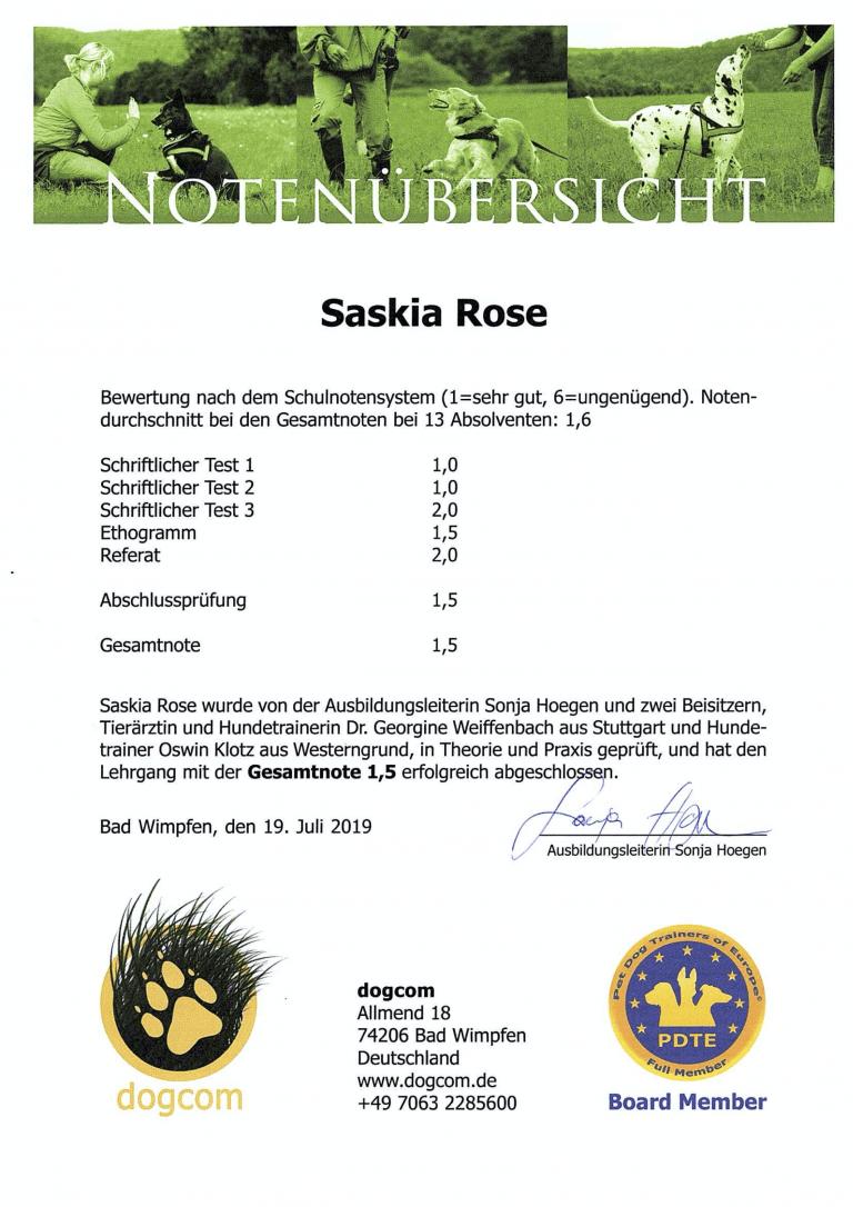 Notenübersicht Zertifikat